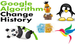 Google-Algorithms-change-History