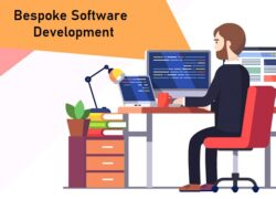 What is Bespoke Software